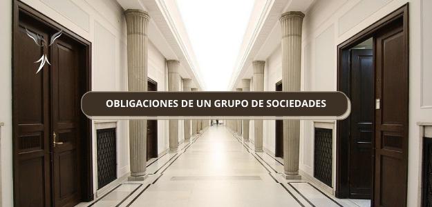 OBLIGACIONES DE UN GRUPO DE SOCIEDADES